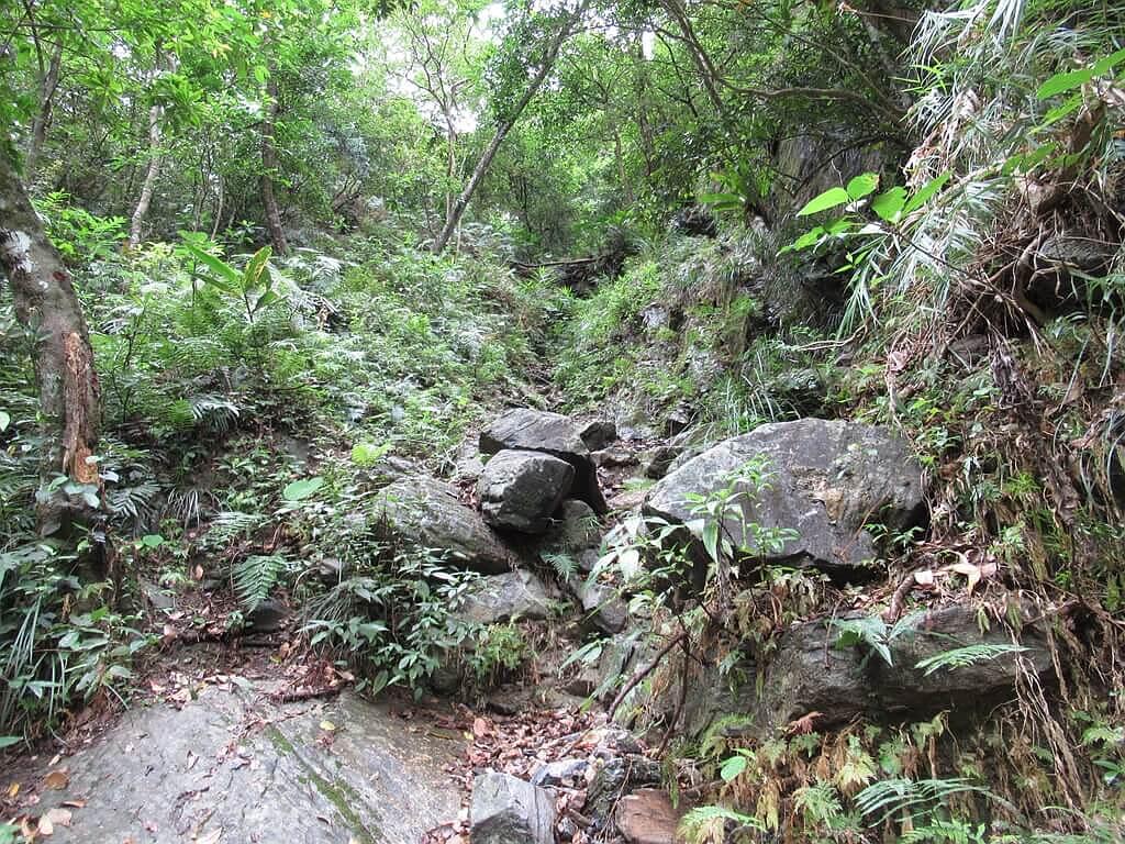 砂卡礑步道(太魯閣國家公園景觀步道)的圖片:山坡上的部分落石
