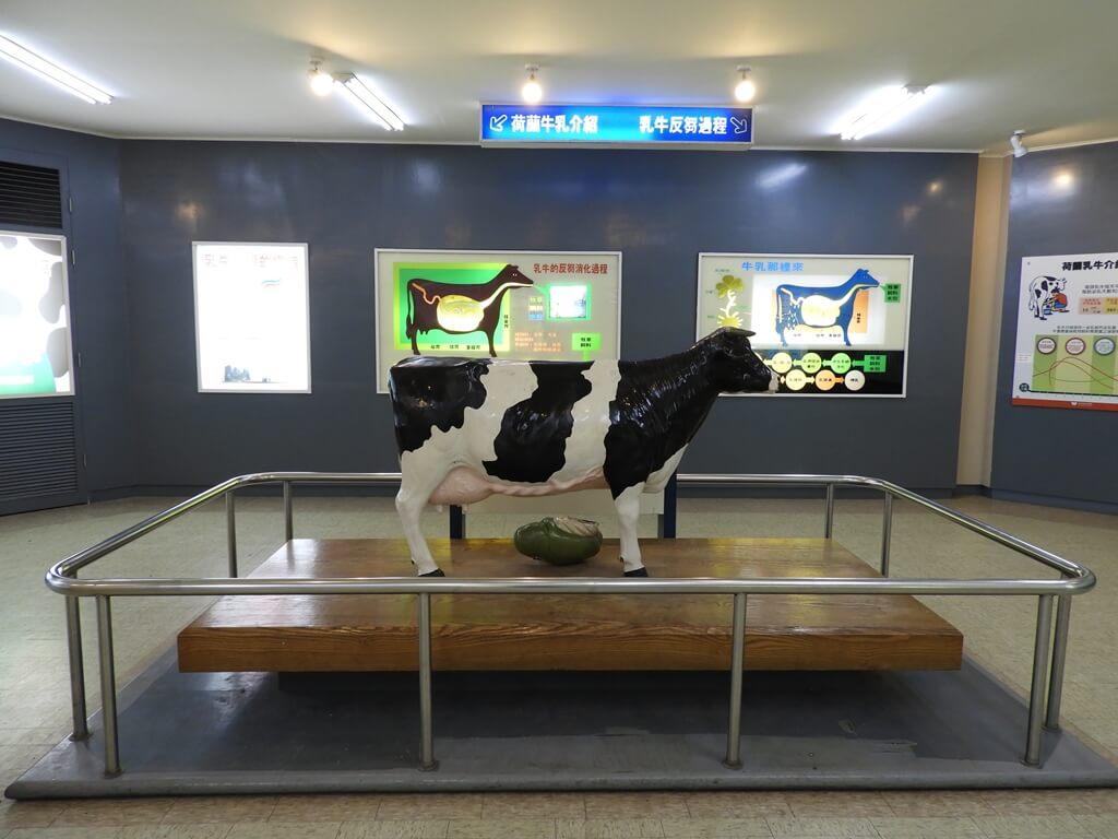 味全埔心牧場的圖片:牛的身體構造