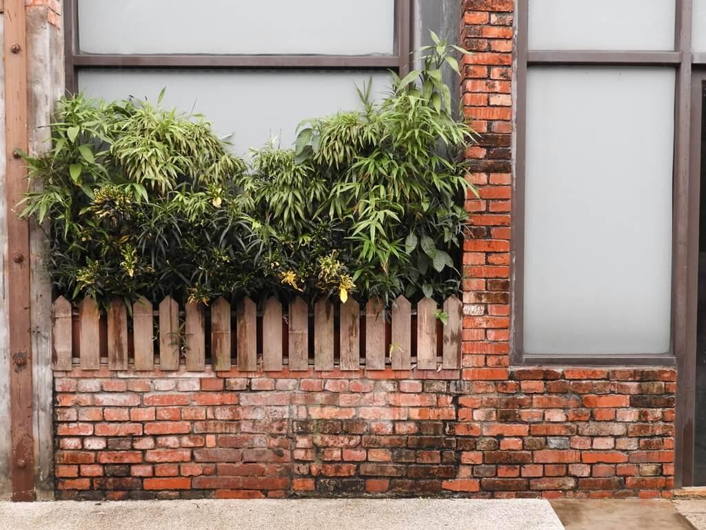 剝皮寮歷史街區的圖片:紅磚牆上種些綠色植物