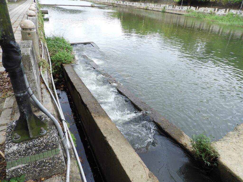 東安古橋(牛欄河親水公園)的圖片:水泥水壩(123655983)