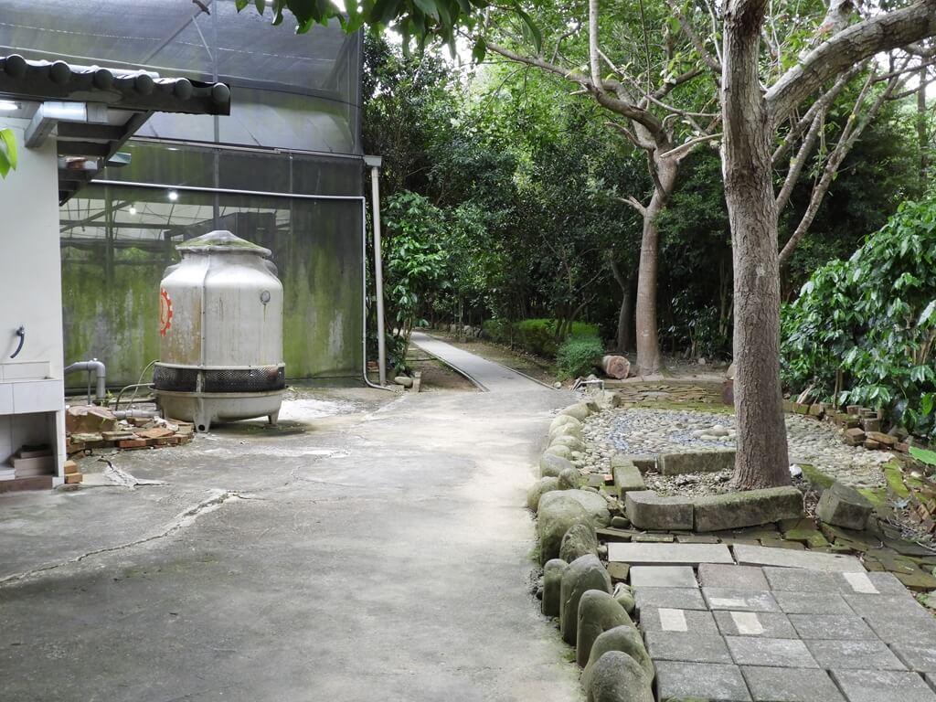關西仙草博物館的圖片:建築物旁邊的戶外參觀路線