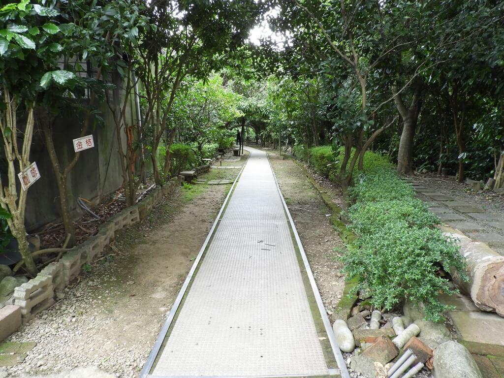 關西仙草博物館的圖片:生態步道