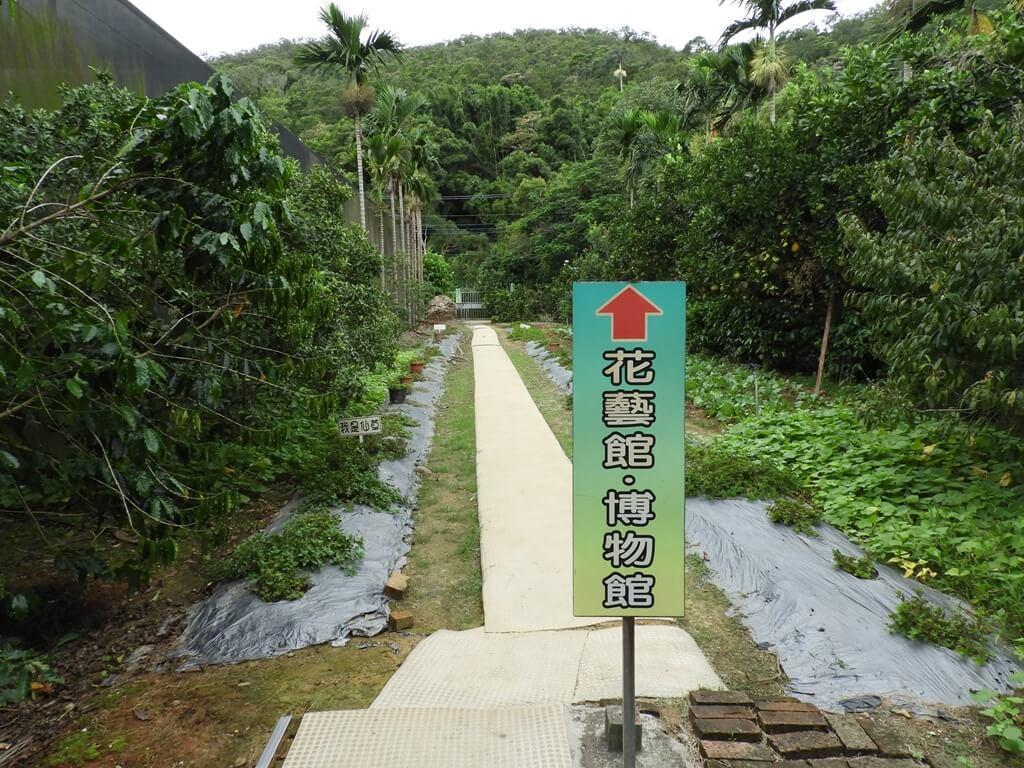 關西仙草博物館的圖片:仙草栽種區
