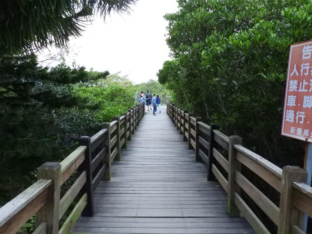 新豐紅樹林生態保護區的圖片:行人專用木棧道