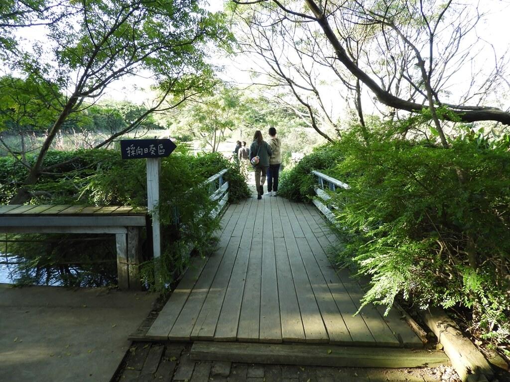 青林農場的圖片:通往採向日葵區的小橋