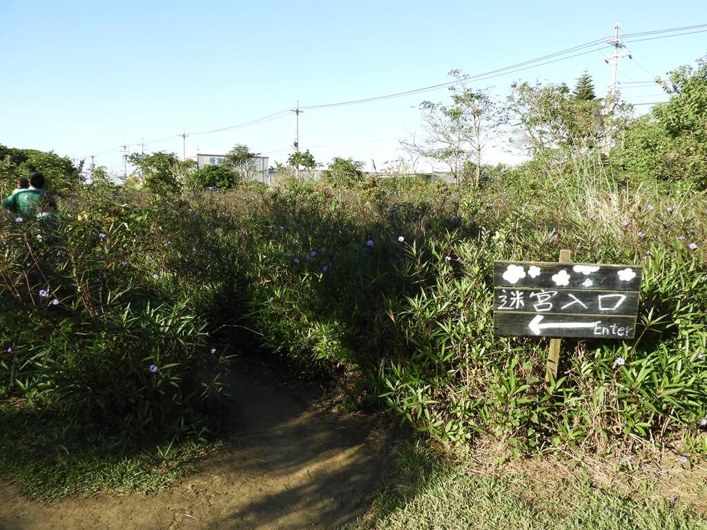 青林農場的圖片:花叢迷宮入口