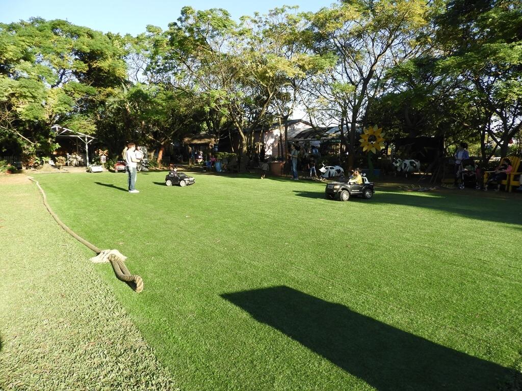 青林農場的圖片:艷陽下的中央草皮
