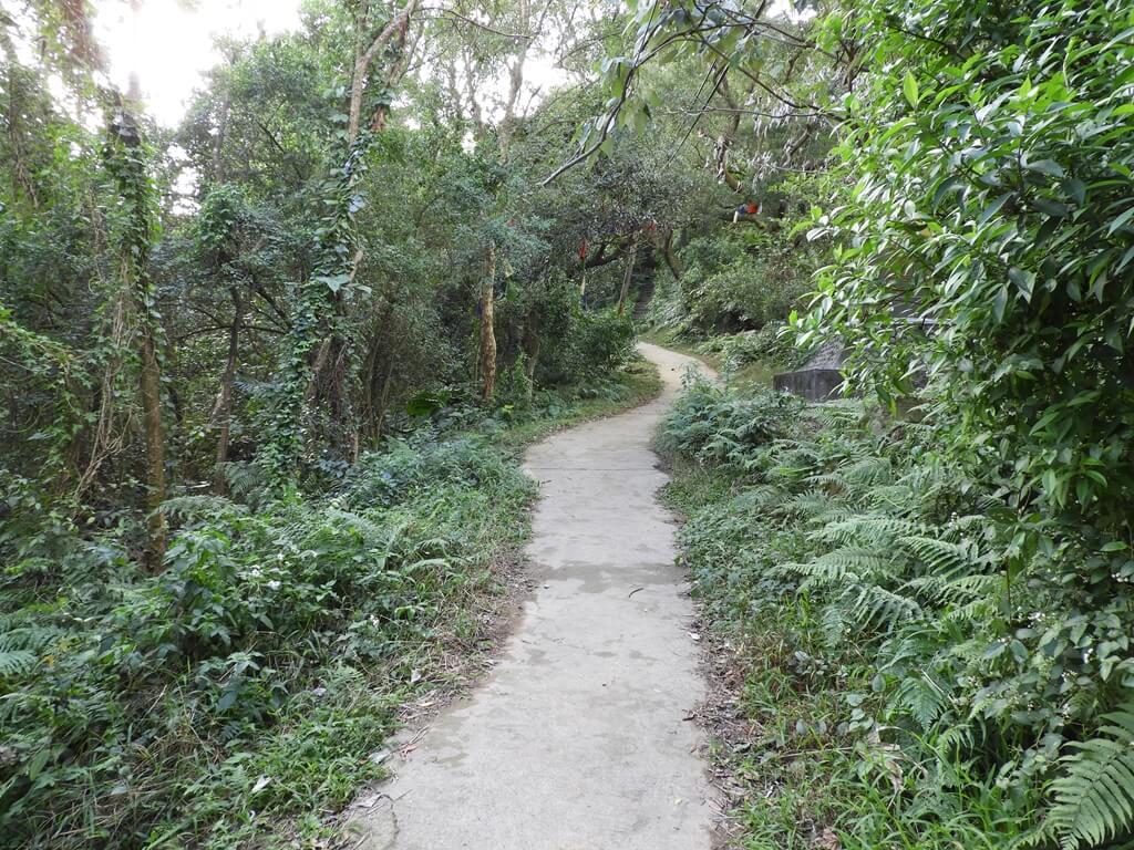 鳶山風景區的圖片:鳶山登山步道(123657420)