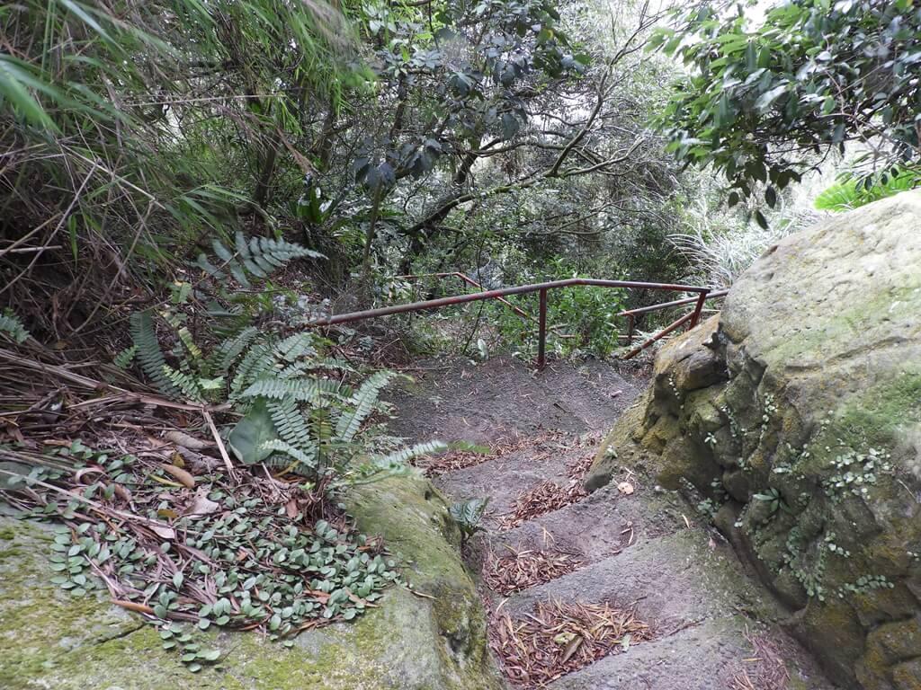 鳶山風景區的圖片:鳶山登山步道(123657439)