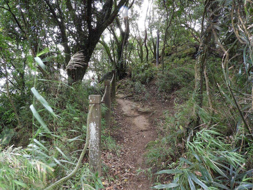 鳶山風景區的圖片:鳶山登山步道(123657442)