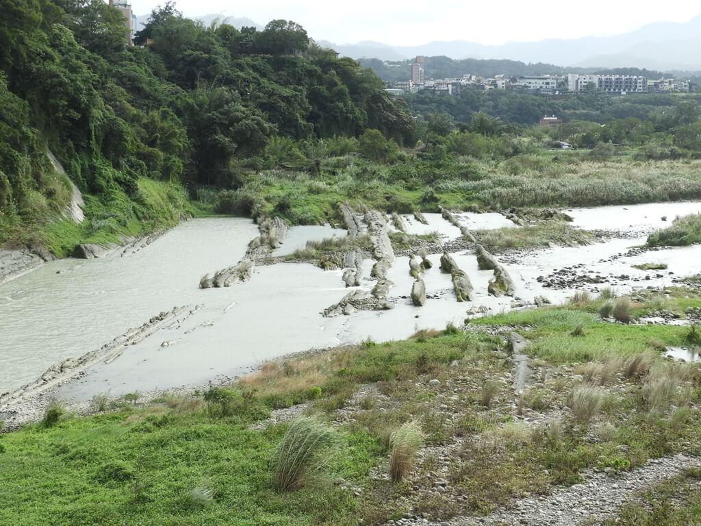 大溪橋的圖片:都是淤泥水的大漢溪 2018.12