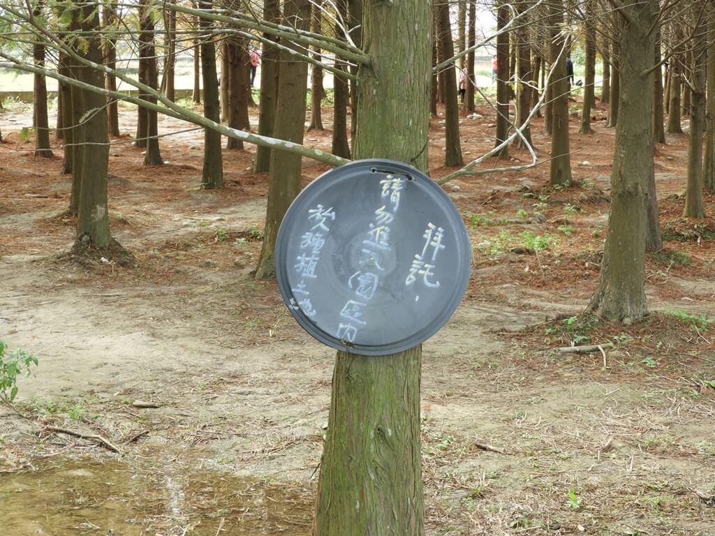 桃園八德落羽松森林的圖片:請勿進入園區內的標語