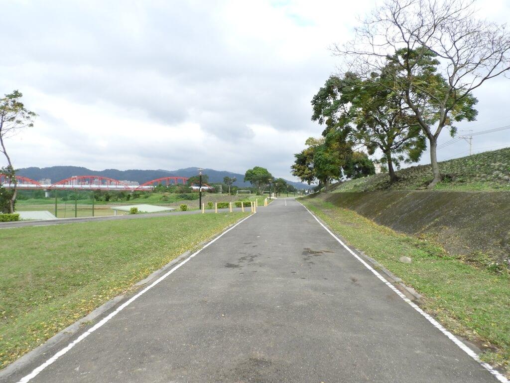 三鶯陶瓷河濱公園的圖片:筆直公路