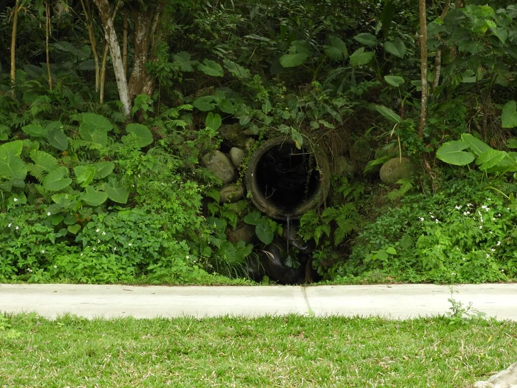 大溪山豬湖親水生態園區的圖片:排水涵洞