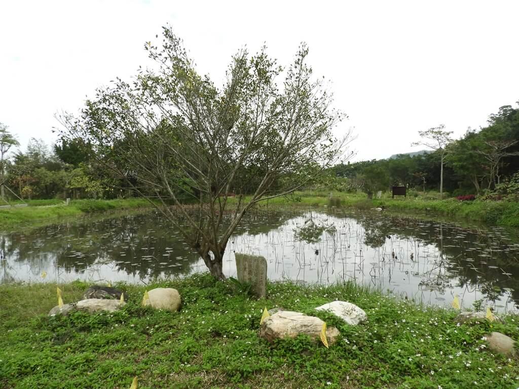 大溪山豬湖親水生態園區的圖片:雲天池(123657935)