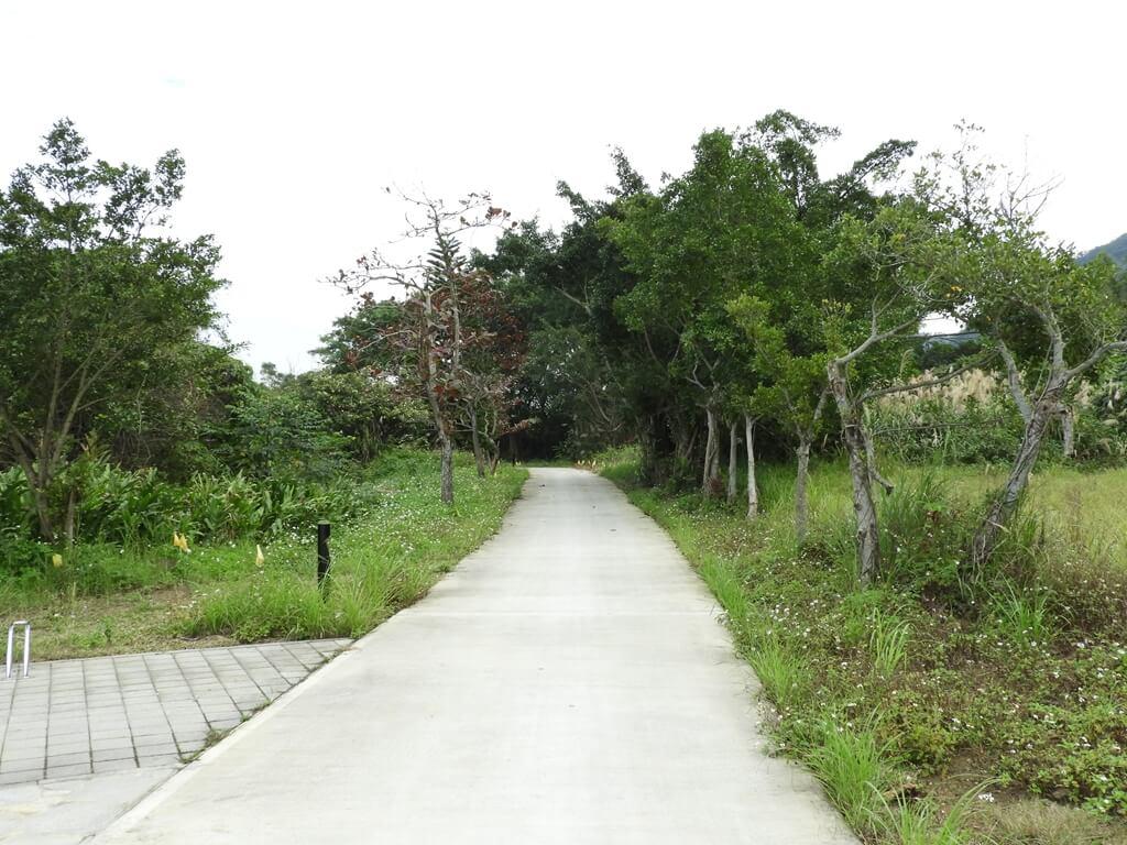 大溪山豬湖親水生態園區的圖片:繼續通往後方的水泥走道