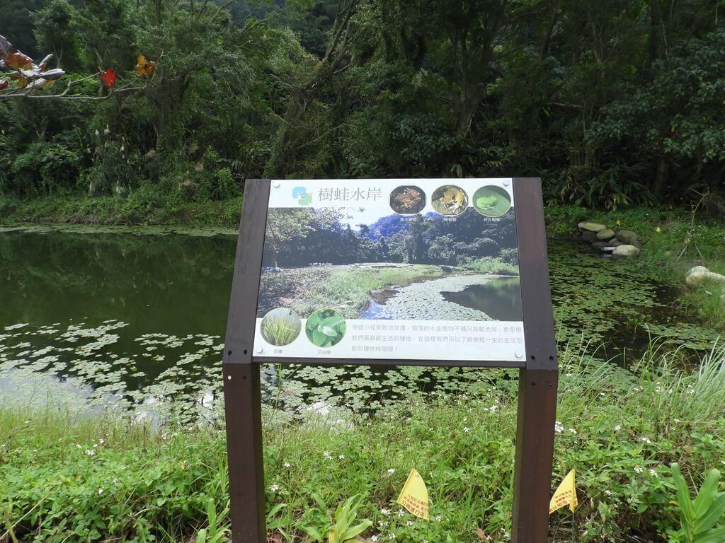 大溪山豬湖親水生態園區的圖片:樹蛙水岸介紹看板