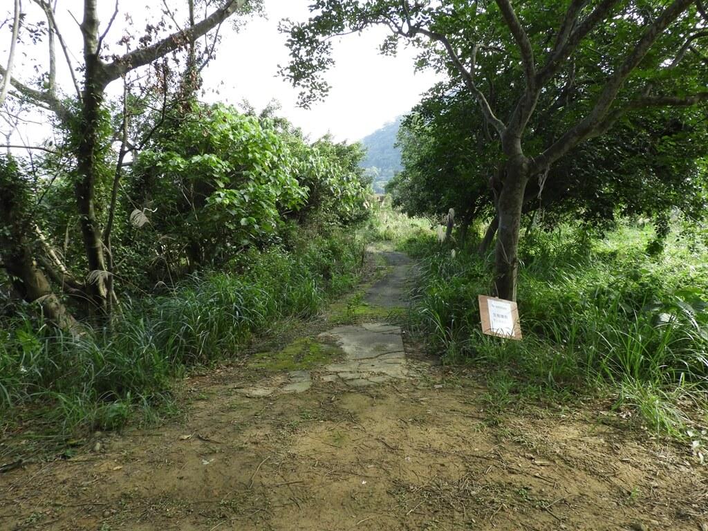 大溪山豬湖親水生態園區的圖片:飛鳶平台旁的生態復育區(123657955)
