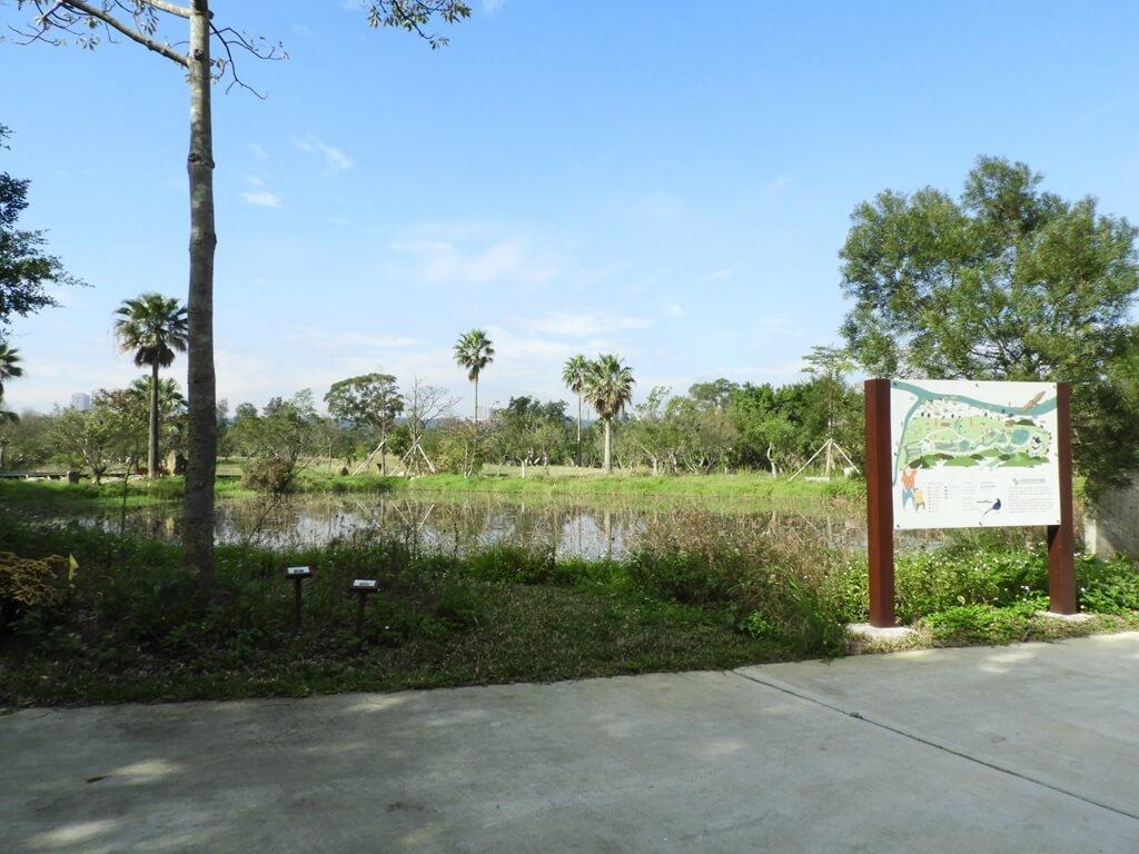 大溪山豬湖親水生態園區的圖片:水蓮池