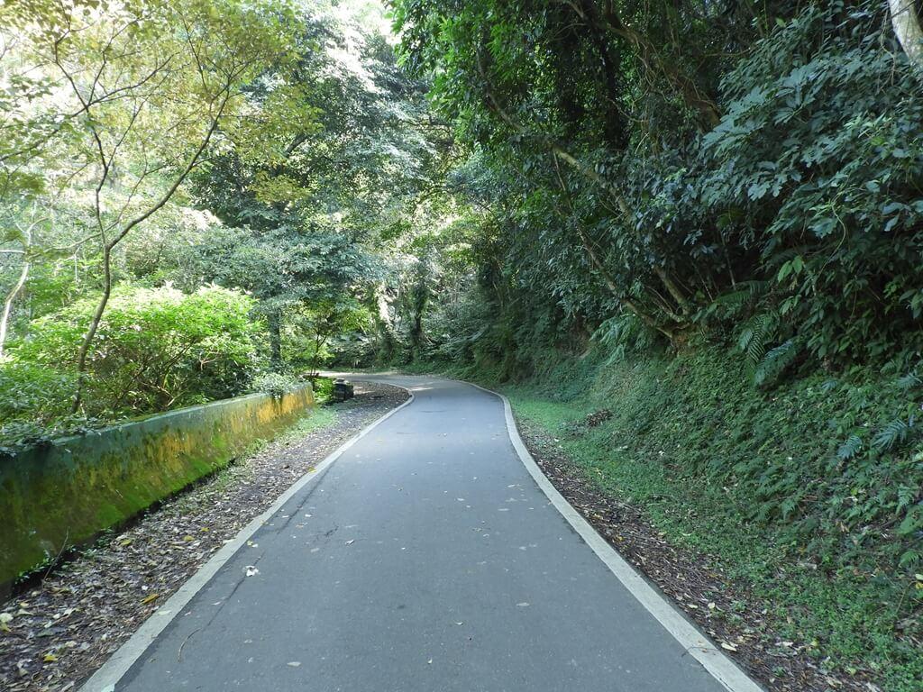 舊百吉隧道的圖片:百吉林蔭步道(123657987)