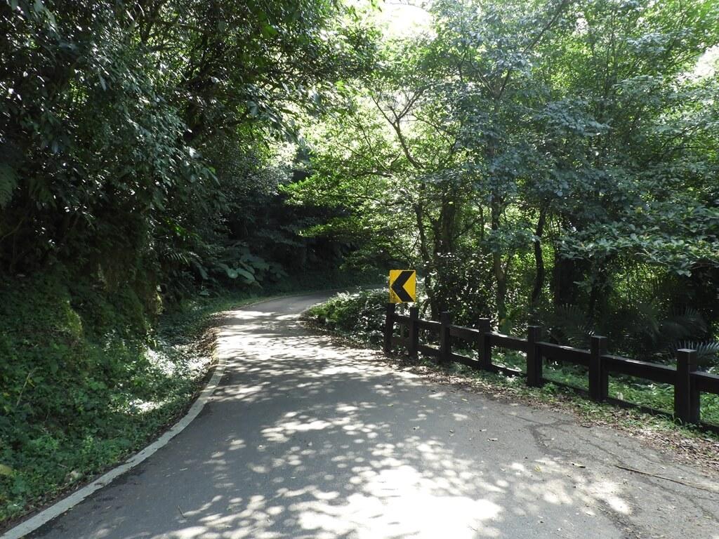 舊百吉隧道的圖片:百吉林蔭步道(123657994)