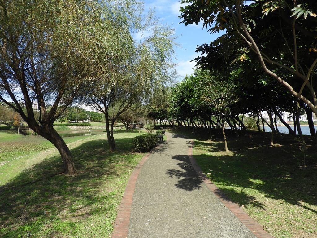 桃園1-4號生態埤塘的圖片:生態埤塘的生態步道(123658097)