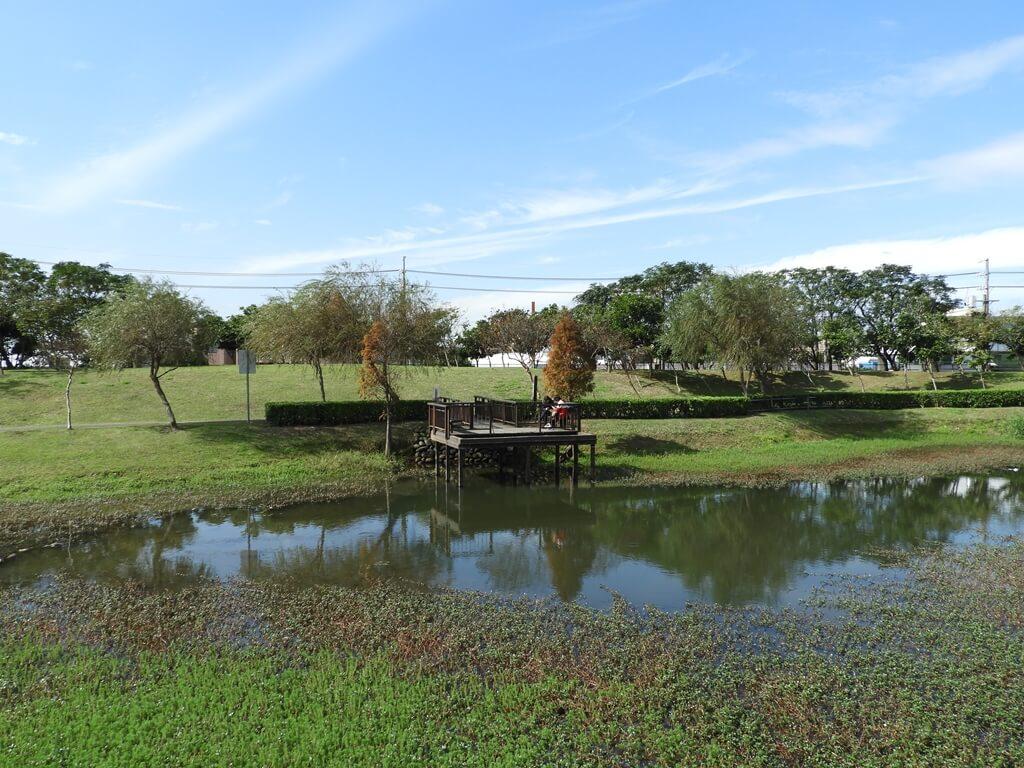 桃園1-4號生態埤塘的圖片:生態水池(123658103)