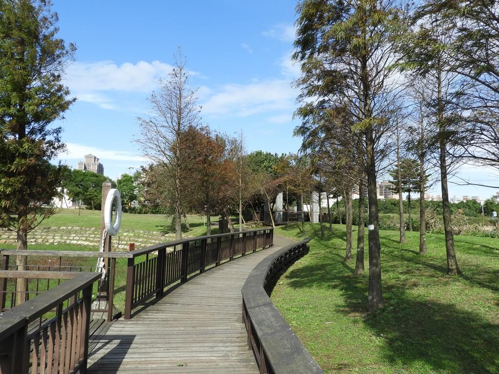 桃園1-4號生態埤塘的圖片:生態步道及落羽松