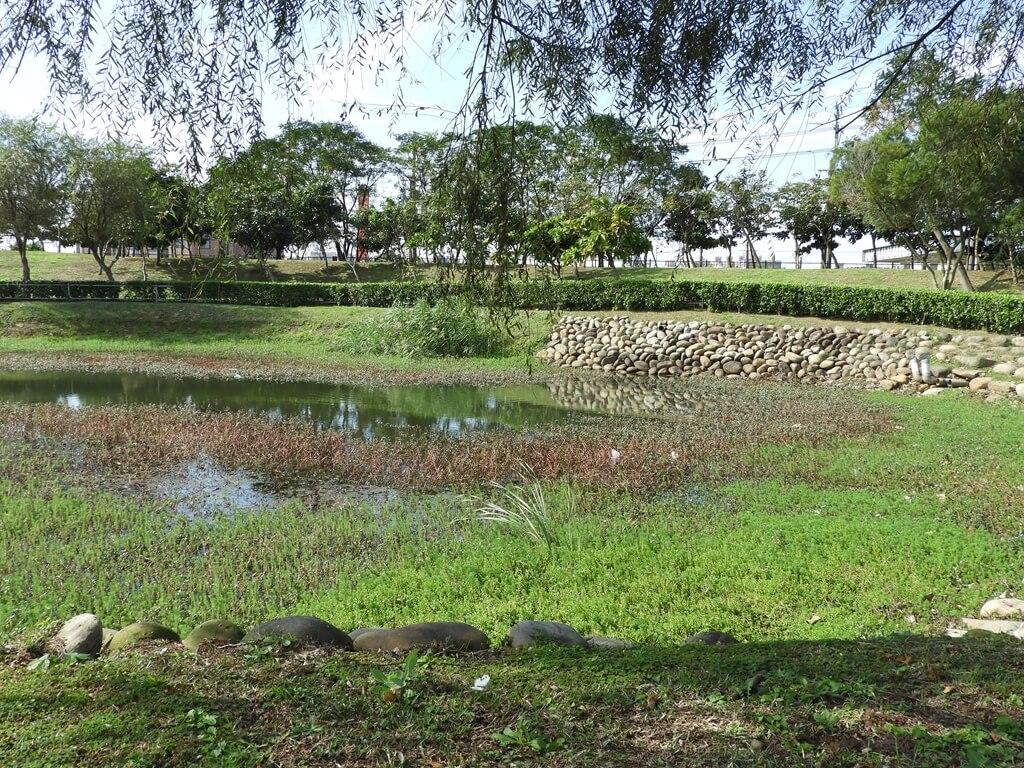 桃園1-4號生態埤塘的圖片:生態水池(123658110)