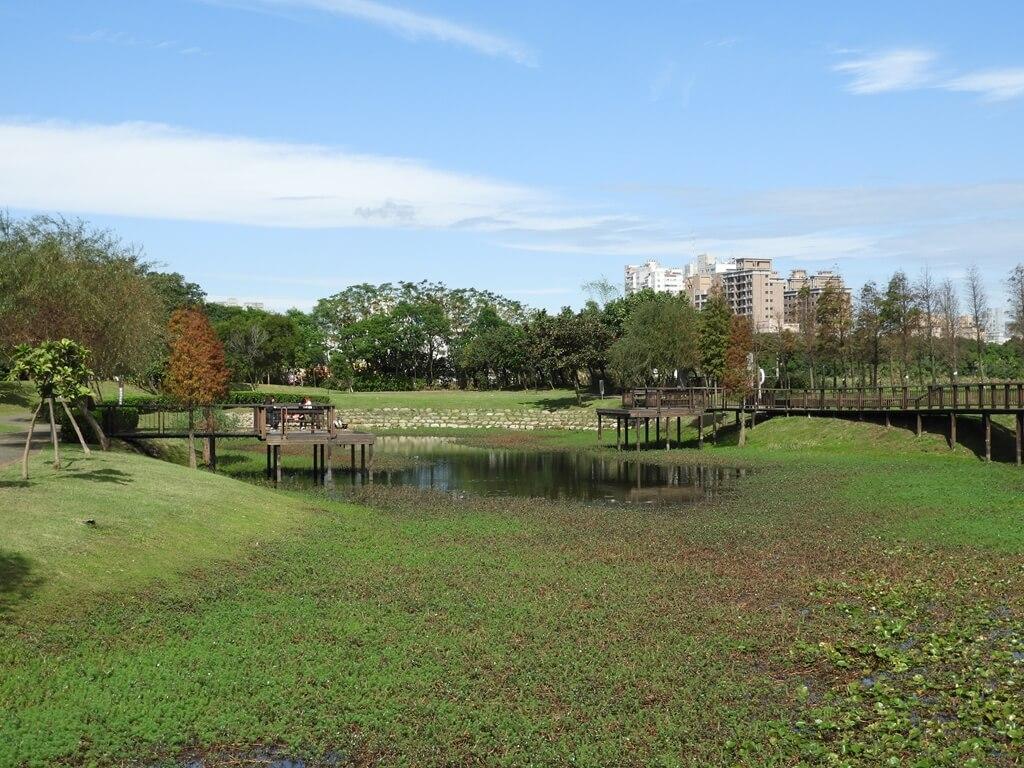 桃園1-4號生態埤塘的圖片:生態水池(123658112)
