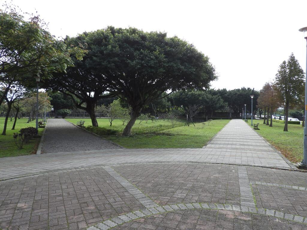 桃園玉山公園的圖片:公園岔路步道