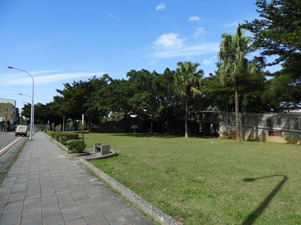 桃園玉山公園的圖片:德壽街旁的公園走道及草地