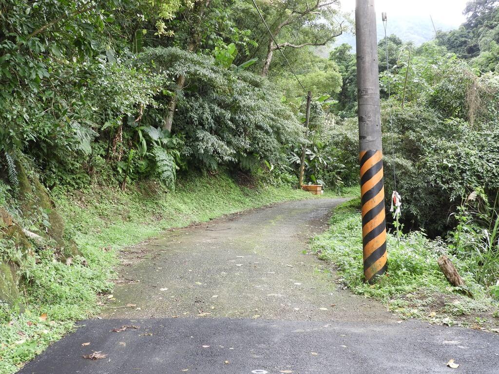白雞山登山步道的圖片:通往登山步道的產業道路(123658208)
