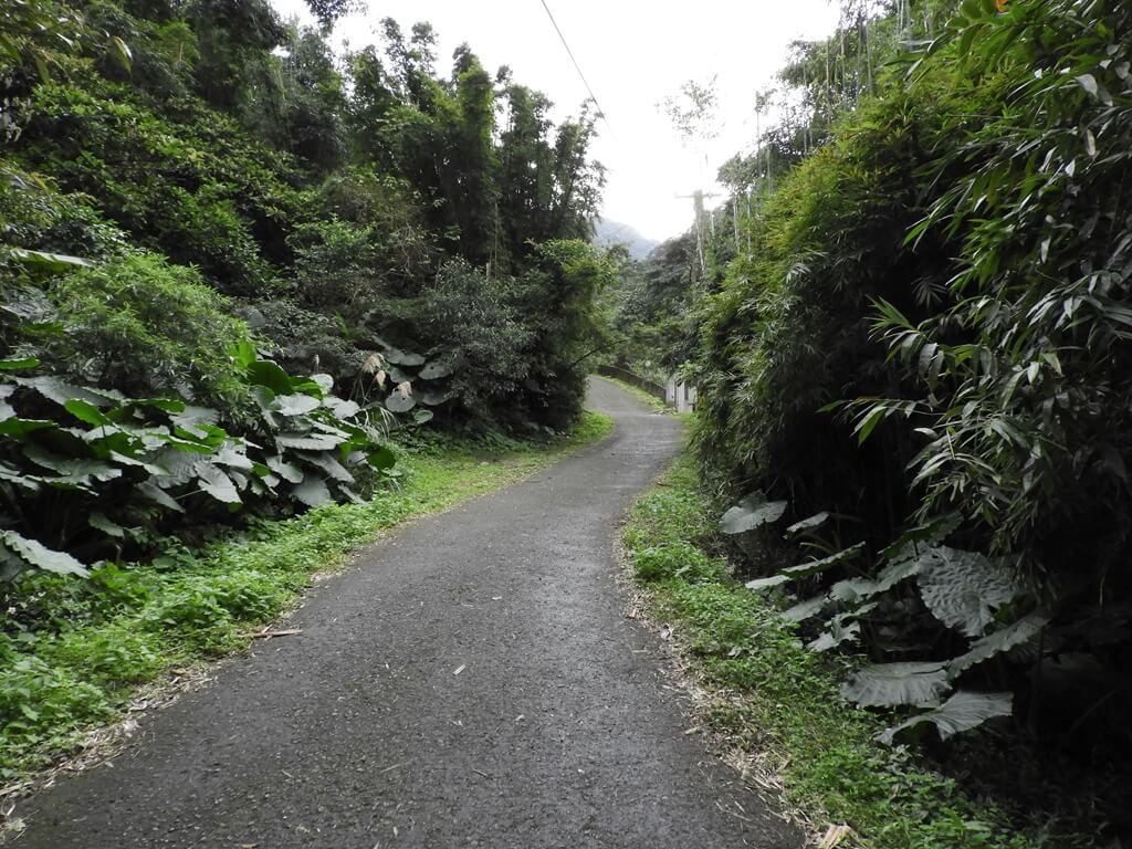 白雞山登山步道的圖片:登山步道前的產業道路(123658215)