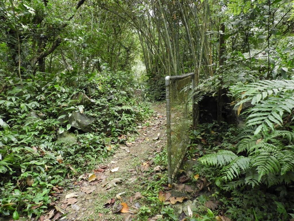 白雞山登山步道的圖片:白雞山步道旁私人住宅鐵門(請勿闖入)