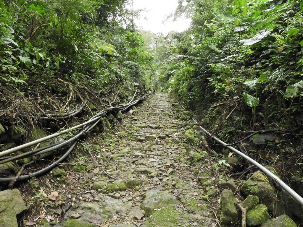 白雞山登山步道
