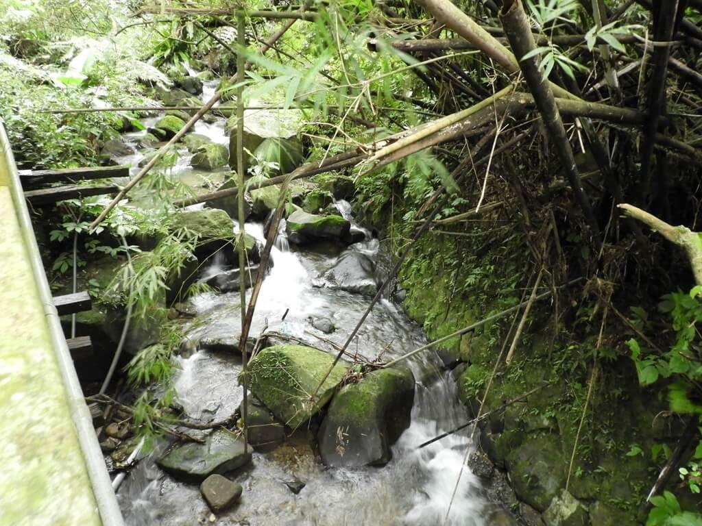 白雞山登山步道的圖片:山峽溪的溪流(123658239)