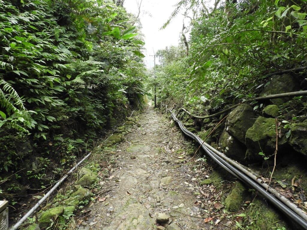 白雞山登山步道的圖片:白雞山登山步道(123658246)