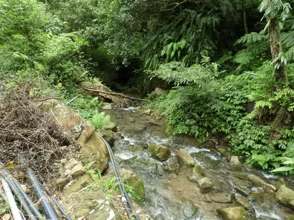 白雞山登山步道的圖片:山峽溪(123658249)