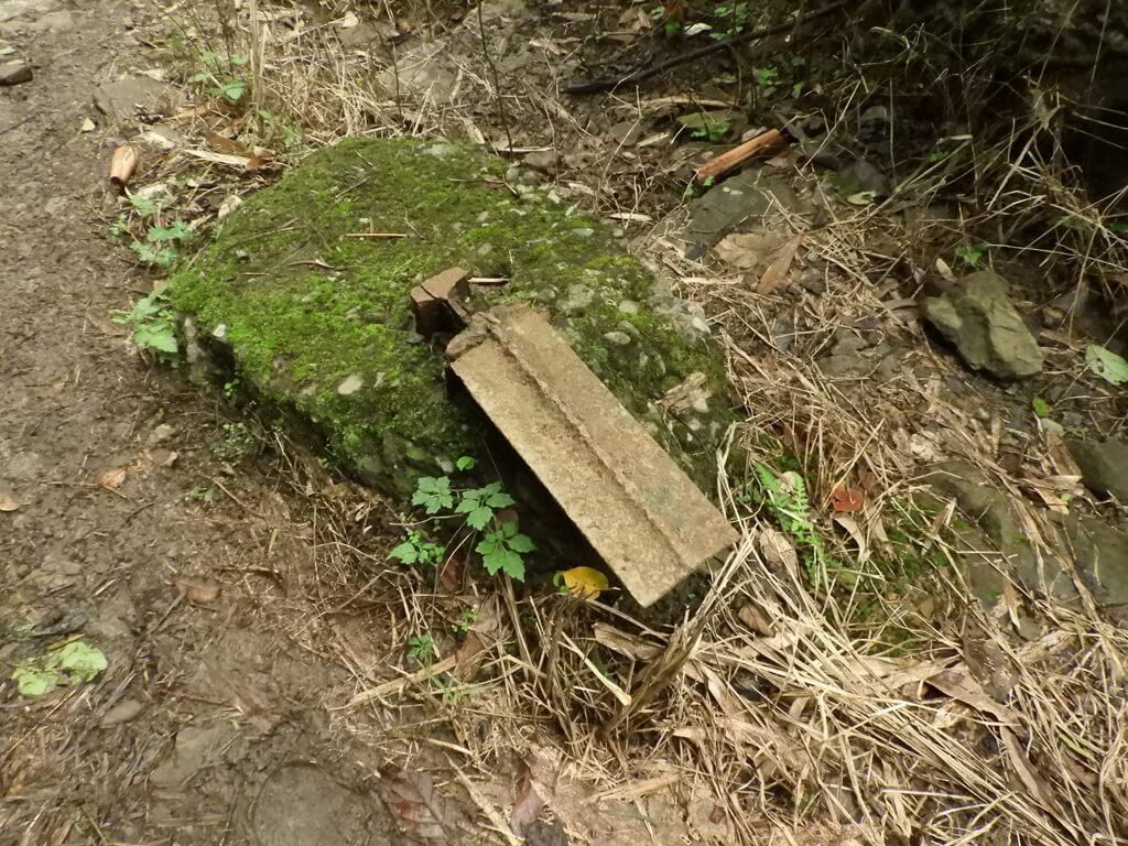 白雞山登山步道的圖片:似乎是鐵軌遺跡