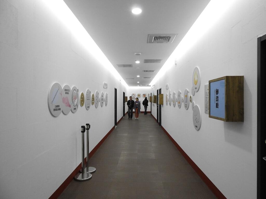 蛋寶生技不老村的圖片:室內走道
