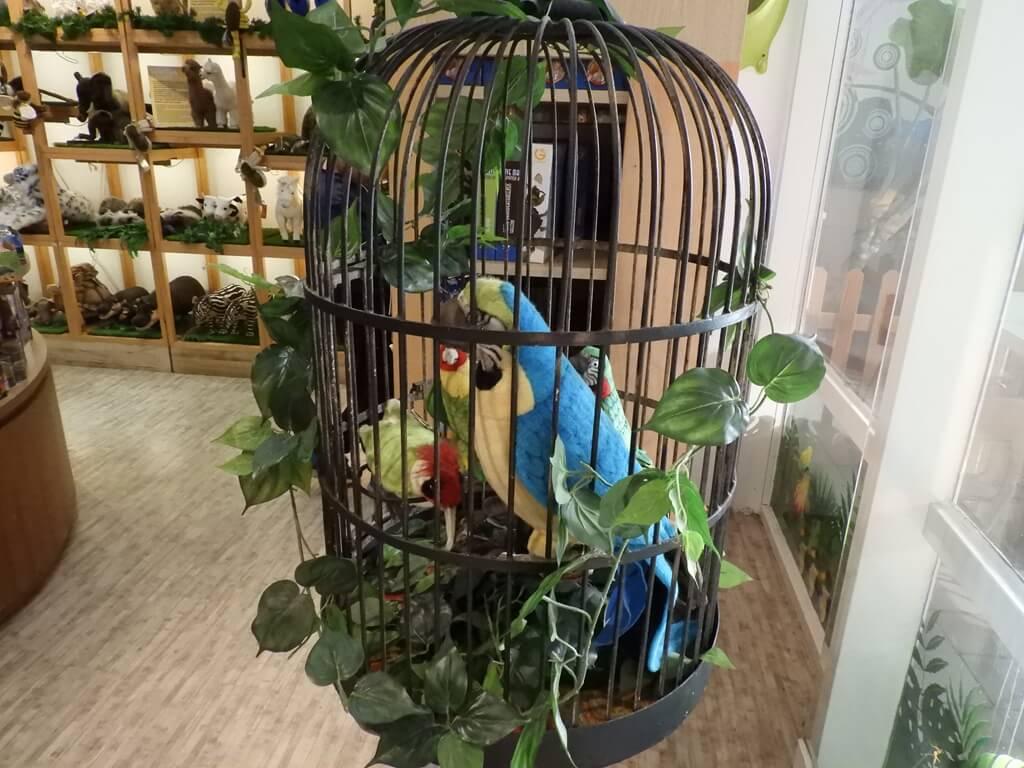 國立臺灣科學教育館的圖片:籠子裡的金剛鸚鵡玩偶