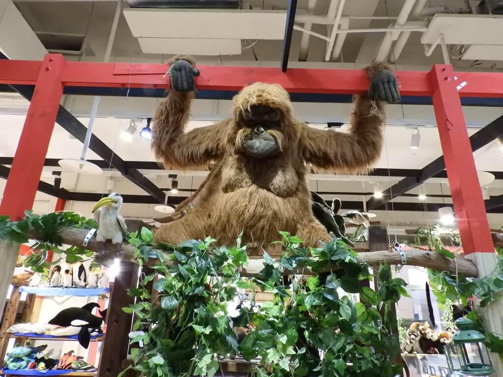 國立臺灣科學教育館的圖片:掛在上頭的猩猩玩偶