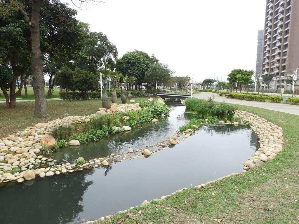 桃園風禾公園的圖片:有許多水生植物的生態水池