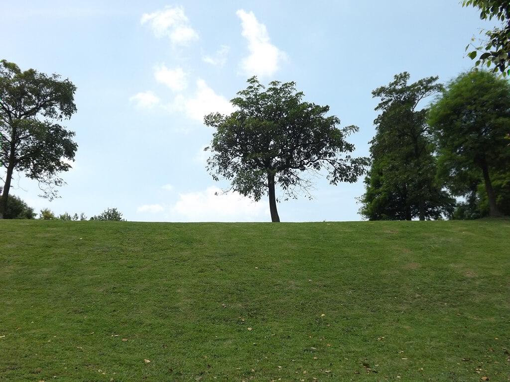 大溪埔頂公園的圖片:草地上的藍天