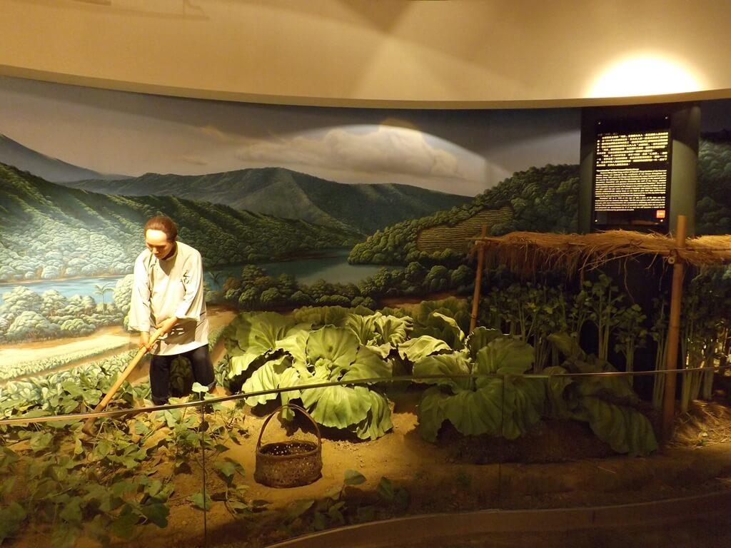 台塑企業文物館的圖片:拿著鋤頭的種菜生活