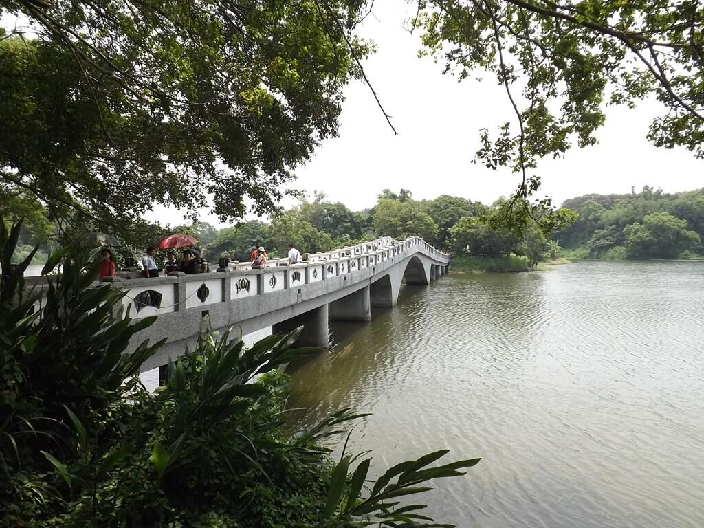 新竹青草湖的圖片:青草湖畔上的映月橋