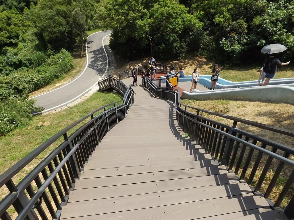 新竹青青草原的圖片:溜滑梯旁的木棧步道