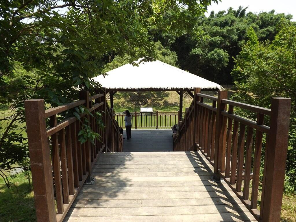 新竹青青草原的圖片:前往生態水池涼亭的木棧道