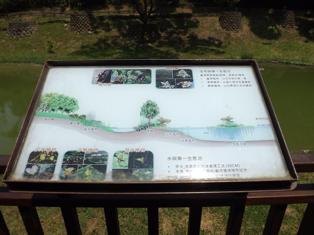 新竹青青草原的圖片:第一生態池的水及生物介紹看板